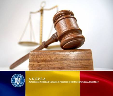 Parallel payment systems created by ANSVSA with the political backing and applicability of CMV colleagues, is the real intention of amending the GD?