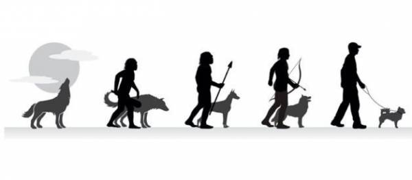Comunicat de presa - Ziua Mondială a Câinelui - 10 oct. 2017